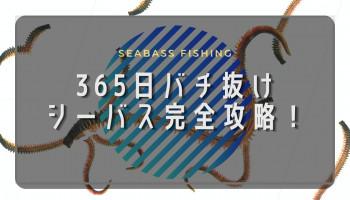 【全て公開】365日バチ抜けシーバス完全攻略法!釣り場・ポイント・ルアー!